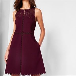 Ted Baker Codi Embroidered Skater Dress NWT